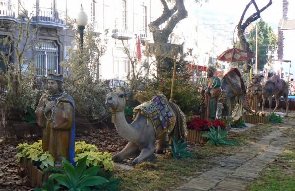 Christmas Maderia